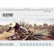 Blueprint Spirits Responsive Website